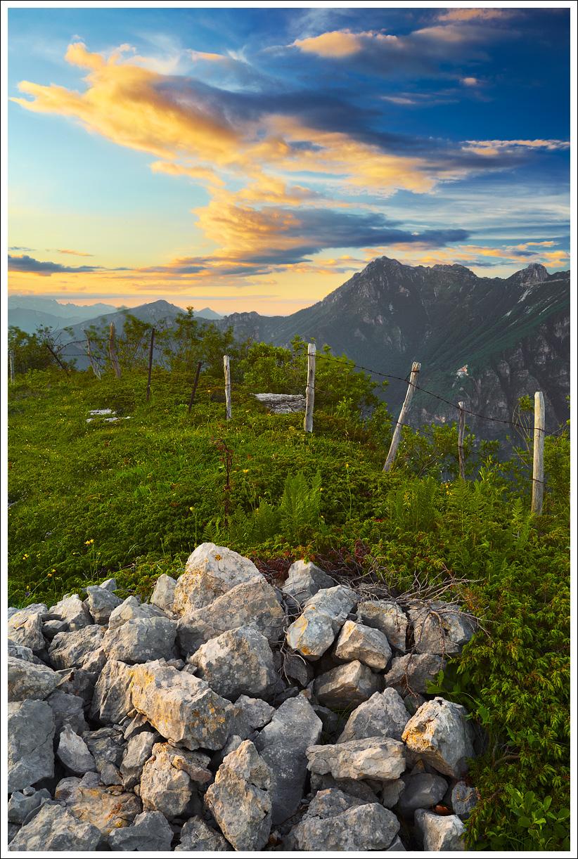 pietre.jpg (822×1222)